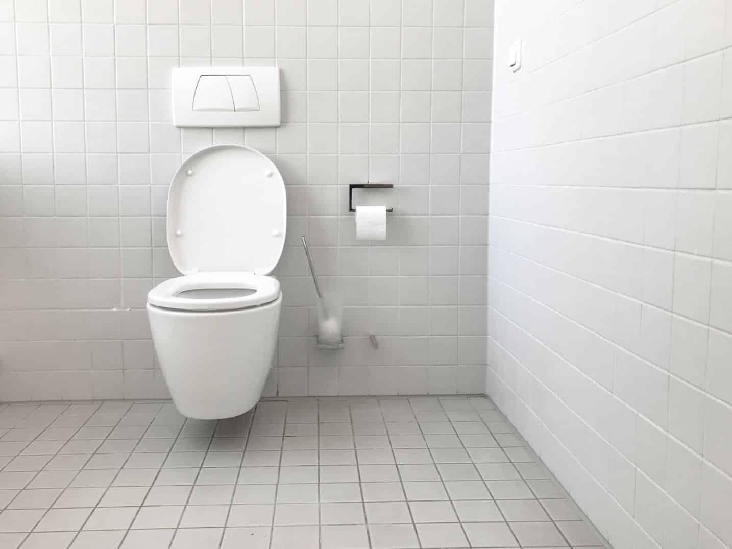 Toilet Care Plumbing